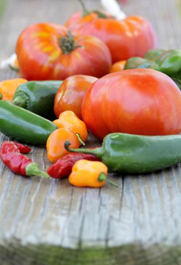 gourganics-veggies